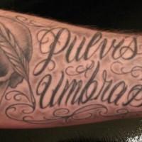Tatuaje en el antebrazo, cráneo con pluma y inscripción