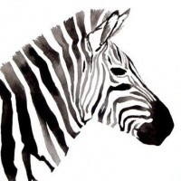 half geometric rushing zebra tattoo design. Black Bedroom Furniture Sets. Home Design Ideas