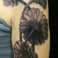 Tatuaje en el brazo, flores preciosas negras