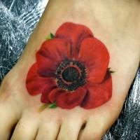 Realistische Mohnblume Tattoo am Fuß