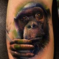 Sad realistic colorful chimpanzee tattoo on arm