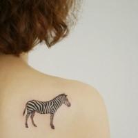 piccolo carino zebra tatuaggio su schiena a parte superiore