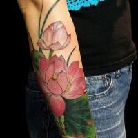 Tender pink lotus flower tattoo sleeve for women on forearm