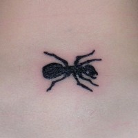 Tiny simple black-ink ant tattoo on neck