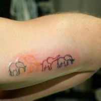 insolito contorno vari colori famiglia elefante tatuaggio su braccio