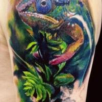 bellissimi colori camaleone seduto su ramo di albero tatuaggio a mezza manica