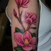 bellissimo colorato fiore magnolia con scritto nome tatuaggio a mezza manica