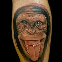 Wonderful realistic chimpanzee showing a tongue tattoo on arm