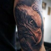 realistico dipinto inchiostro nero dettagliato testa aquila tatuaggio su braccio