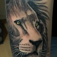Accurate painted colored tattoo of lion head with big yellow eyes