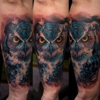 Amazing colored arm tattoo of very detailed owl