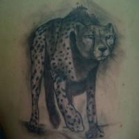 eccezionale inchiostro grigio ghepardo  dimensione pieno tatuaggio