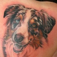 Amazing naturally colored realistic dog's portrait memorial tattoo on shoulder blade