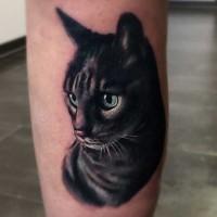 Tatuaje en la pierna,  retrato de gato lindo super realista
