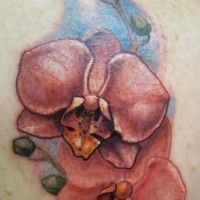 Awesome detailed red orchids flower tattoo