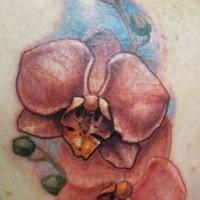 Wunderbares detailliertes rotes Orchideen Blumen Tattoo