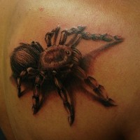 Beautiful realistic spider tattoo