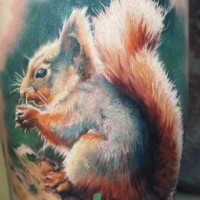Beautiful tattoo squirrel on hand