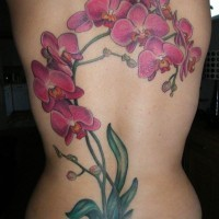 Big purple branch of orchids tattoo on back