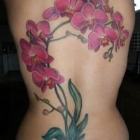 Großer lilafarbiger Ast Orchideen Tattoo am Rücken