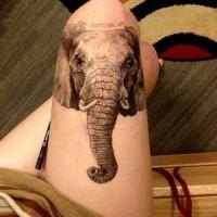 grande realistico dipinto nero e bianco testa di elefante con lettere tatuaggio  su coscia