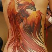 Tatuaggio grande sulla spalla l'uccello giallo rosso