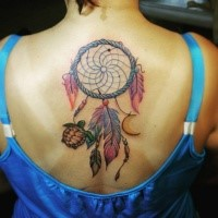 Big sweet looking colored black tattoo of turtle with dream catcher