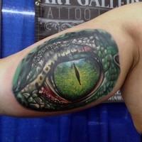 grande molto realistico occhio di alligatore tatuaggio su bicipite