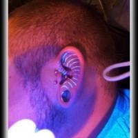 staffe luce nera tatuaggio su orecchio