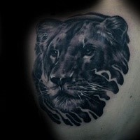Black ink cute scapular tattoo of baby lion