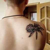 Black tarantula tattoo on shoulder blade