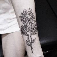 Blackwork style cool looking arm tattoo of chrysanthemum flower by Zihwa