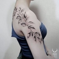 Blackwork style usual looking painted by Zihwa shoulder tattoo of leaves vine