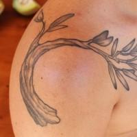 ramo di albero olive tatuaggio sulla spalla