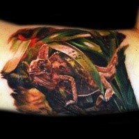 Breathtaking very detailed biceps tattoo of natural lizard
