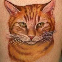 Tatuaje  de gato pelirrojo dulce realista