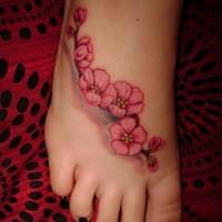 Tatuaje en el pie, ramita de flores magníficas