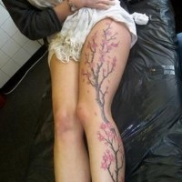 Cherry blossom tree with flowers tattoo on whole leg