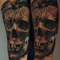 Colored amazing looking arm tattoo of broken human skull