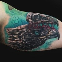 Colored cool looking biceps tattoo of crow with bird skull