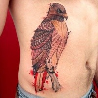 Colorful beautiful painted belly tattoo of stunning eagle