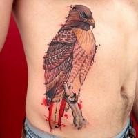 Colorido y hermoso tatuaje del vientre pintado del impresionante águila