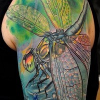 Colorful dragonfly tattoo on arm for men