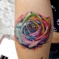 Tatuaggio pittoresco sulla gamba la rosa colorata