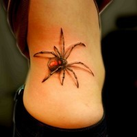 Colorful spider tattoo on ribs