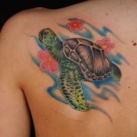 colorato fiori e tartaruga marina tatuaggio sulla scapola