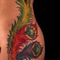 Coloured peacock feathers tattoo on ribs