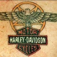 Cool coloured harley davidson logo tattoo