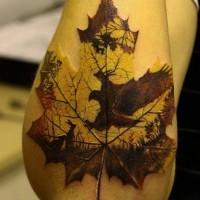 idea fresca aquila caccia lepri foglio d'acero di stampa tatuaggio