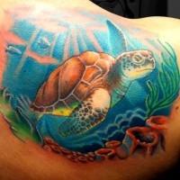 bella molto colorato grande tartaruga sottomarina tatuaggio su spalla